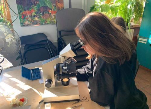 Wykrywanie białek oraz obserwacje mikroskopowe