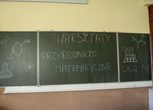 Warsztaty matematyczno  - przyrodnicze